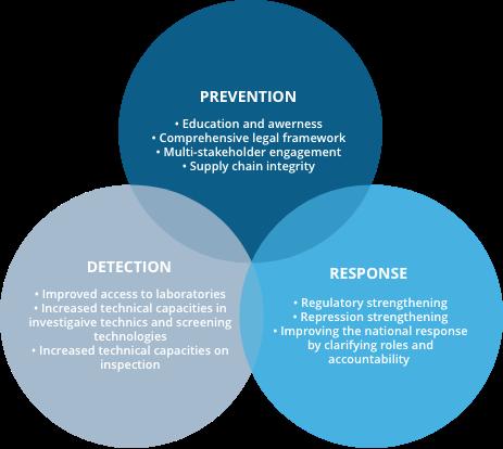 Schema Program Approach